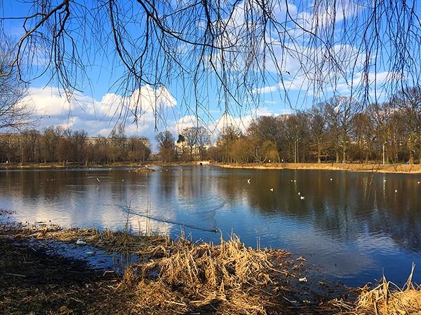 Летнее озеро Калининграда, часть 1