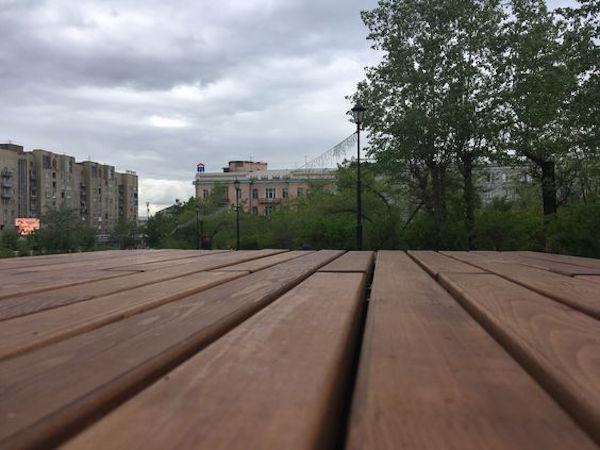 Прогулка по сосновому бору в Чите с сюрпризом