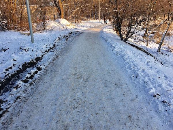Снег, морозы и сроки благоустройства Летнего озера в Калининграде