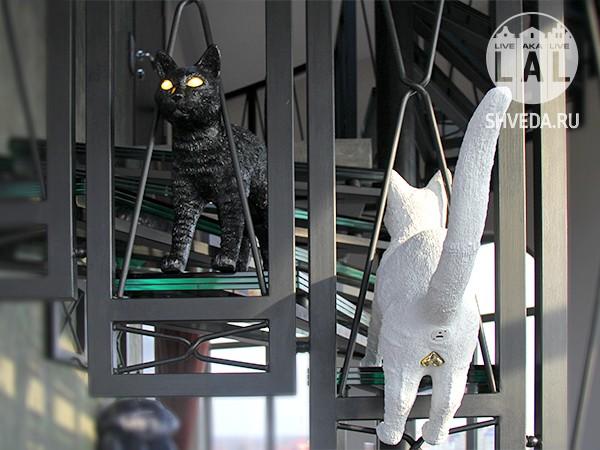 Музей Мурариум - самая большая в России арт-коллекция кошек