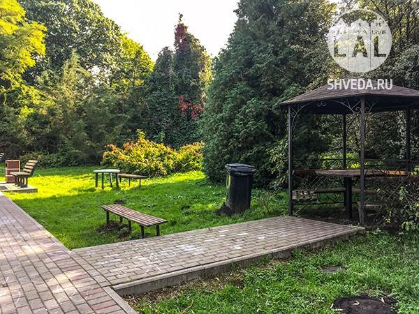 Ботанический сад: виртуальная прогулка